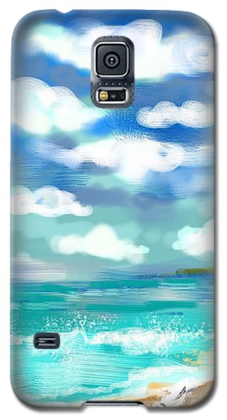Beach Birds Galaxy S5 Case by Elaine Lanoue