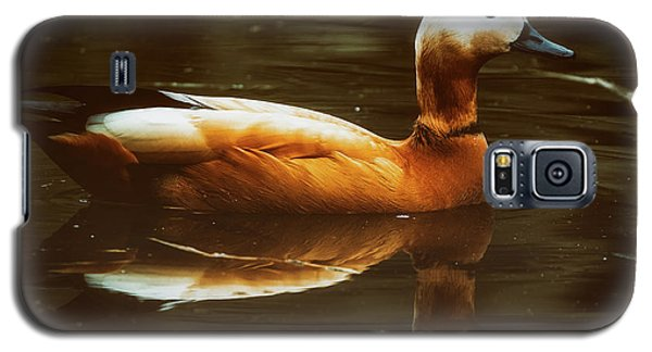 Galaxy S5 Case featuring the photograph Beautiful Rust Goose by The 3 Cats