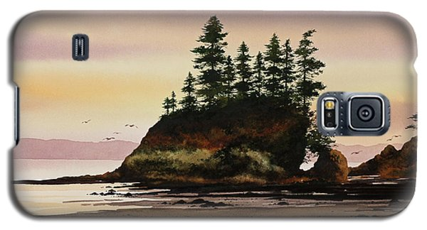 Galaxy S5 Case featuring the painting Beautiful Shore by James Williamson