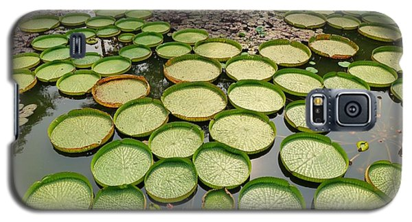 Beautiful Victoria Water Platters And Flowers Galaxy S5 Case by Yali Shi