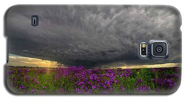 Galaxy S5 Case featuring the photograph Beauty And The Beast by Aaron J Groen