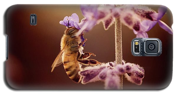 Bee Galaxy S5 Case