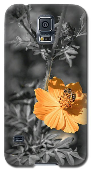 Bee On Flower Galaxy S5 Case