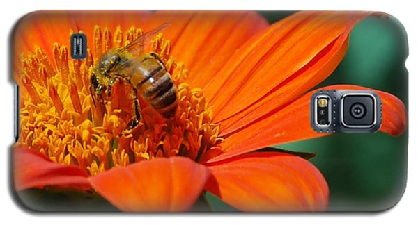 Galaxy S5 Case featuring the photograph Bee-utiful by Debbie Karnes