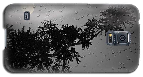 Bergman Galaxy S5 Case