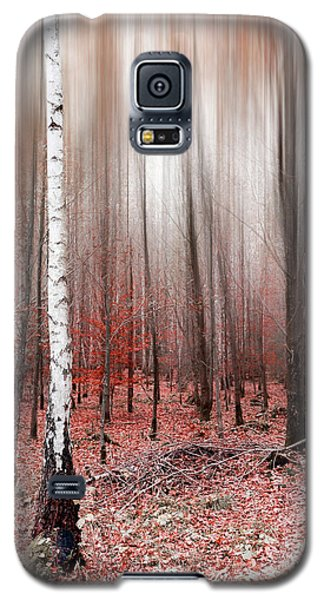 Galaxy S5 Case featuring the photograph Birchforest In Fall by Hannes Cmarits