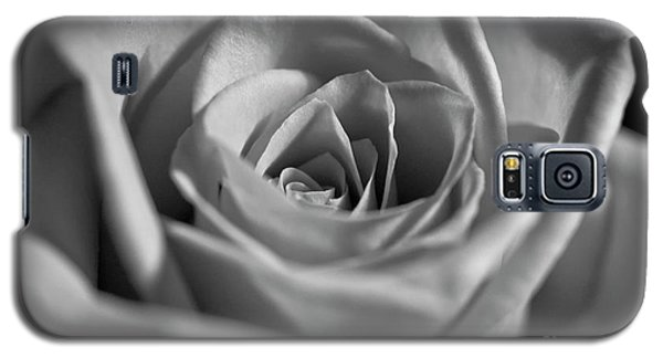Galaxy S5 Case featuring the photograph Black And White Rose by Micah May