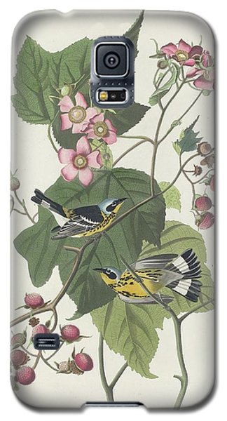 Black And Yellow Warbler Galaxy S5 Case