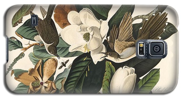 Black-billed Cuckoo Galaxy S5 Case by Dreyer Wildlife Print Collections