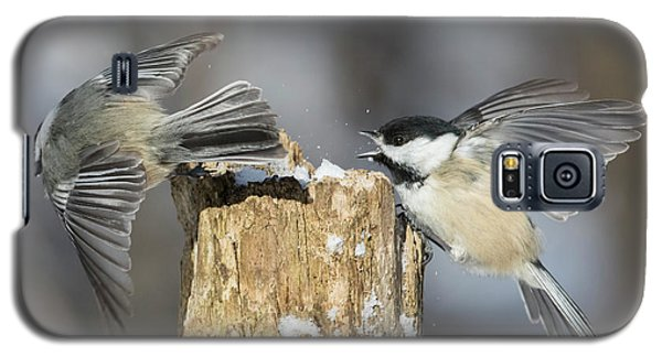 Galaxy S5 Case featuring the photograph Black-capped Chickadee In Winter by Mircea Costina Photography