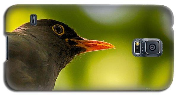 Blackbird Galaxy S5 Case by Jivko Nakev