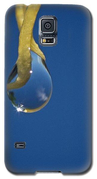 Blue Galaxy S5 Case by Richard Cummings