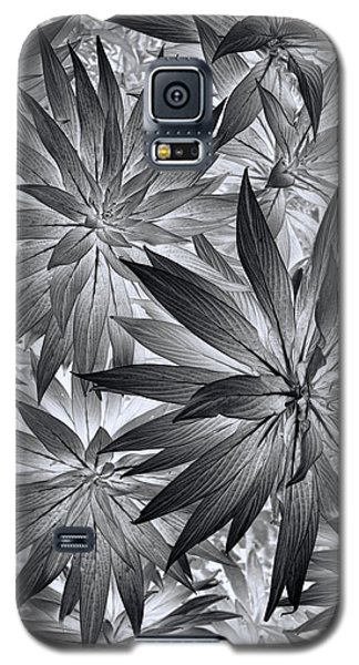 Galaxy S5 Case featuring the photograph Botanical by Wayne Sherriff