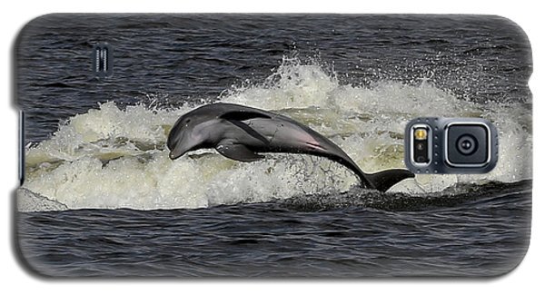 Bottlenose Dolphin Galaxy S5 Case