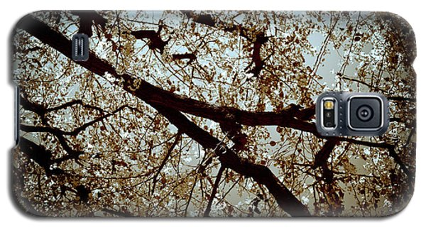 Branch One Galaxy S5 Case