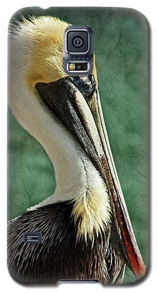 Brown Pelican Portrait Galaxy S5 Case