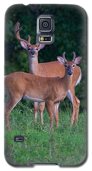 Buck Father And Son Galaxy S5 Case