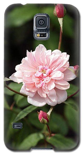 Budding Galaxy S5 Case