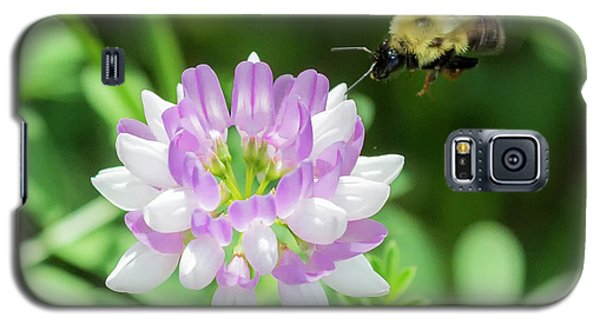 Bumble Bee Pollinating A Flower Galaxy S5 Case
