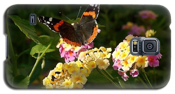 Galaxy S5 Case featuring the photograph Busy Butterfly Side 2 by Felipe Adan Lerma