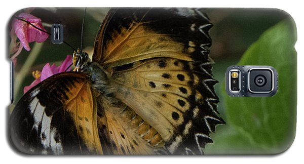 Butterfly 6 Galaxy S5 Case