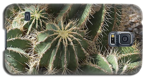Cacti Galaxy S5 Case