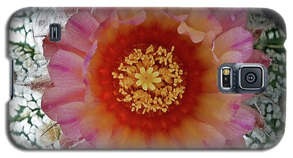 Cactus Flower 5 Galaxy S5 Case