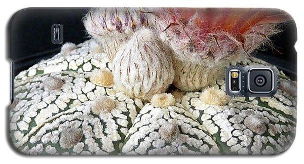 Cactus Flower 6 Galaxy S5 Case