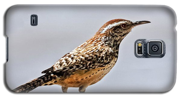 Galaxy S5 Case featuring the photograph Cactus Wren by Robert Bales