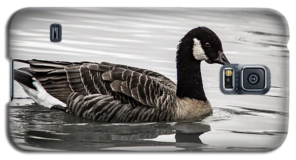 Galaxy S5 Case featuring the photograph Canada Goose by Jean Noren