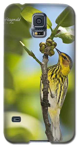 Cape May Galaxy S5 Case
