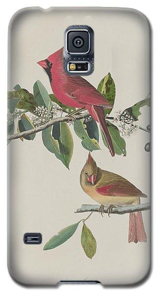 Audubon Galaxy S5 Case - Cardinal Grosbeak by Dreyer Wildlife Print Collections