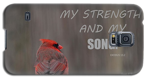 Cardinal In The Snowstorm With Scripture Galaxy S5 Case by Sandi OReilly