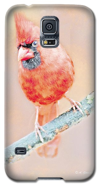 Galaxy S5 Case featuring the photograph Cardinal Male by A Gurmankin
