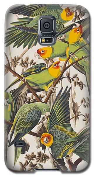 Carolina Parrot Galaxy S5 Case by John James Audubon