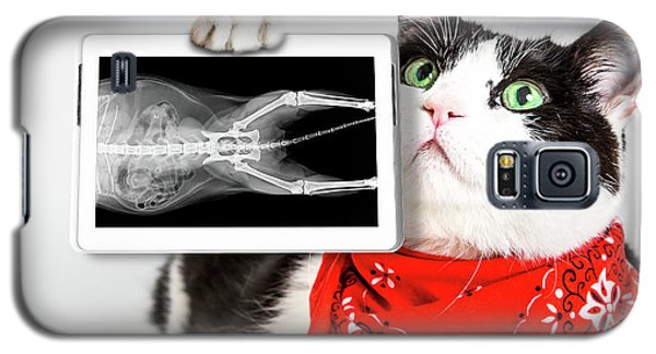 Cat With X Ray Plate Galaxy S5 Case