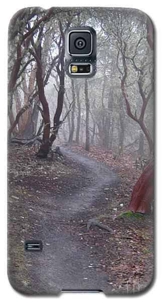 Cathedral Hills Serenity Galaxy S5 Case