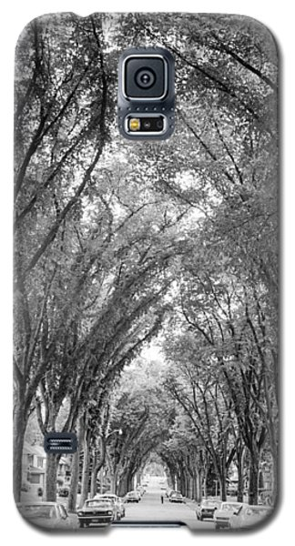 Cathedral Of Trees Galaxy S5 Case