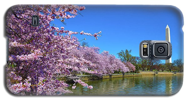 Galaxy S5 Case featuring the photograph Cherry Blossoms by Mitch Cat