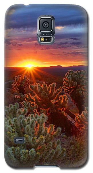 Cholla Sunset  Galaxy S5 Case
