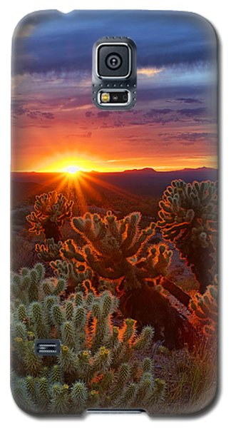 Cholla Sunset  Galaxy S5 Case