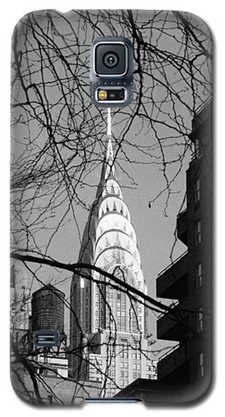 Chrysler Building And Tree Galaxy S5 Case