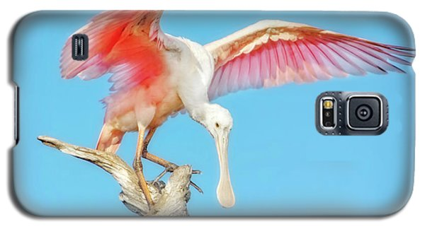 Spoonbill Cleared For Takeoff Galaxy S5 Case