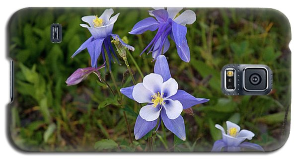 Galaxy S5 Case featuring the photograph Colorado Columbine by Steve Stuller