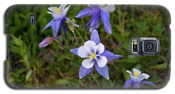 Colorado Columbine Galaxy S5 Case