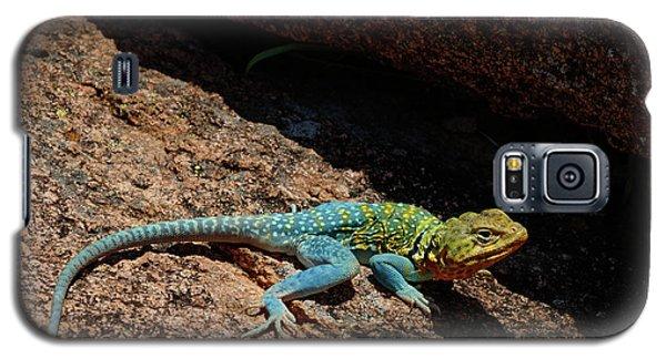 Colorful Lizard II Galaxy S5 Case
