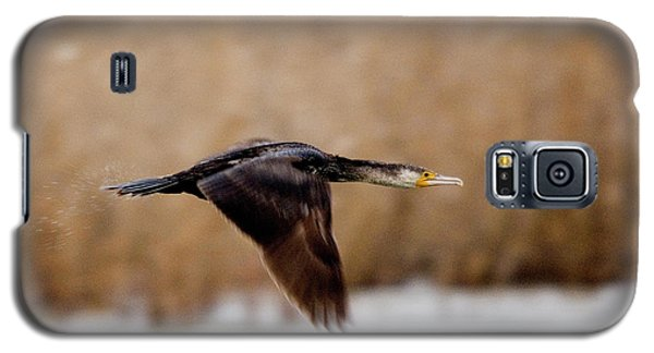 Cormorant In Flight Galaxy S5 Case