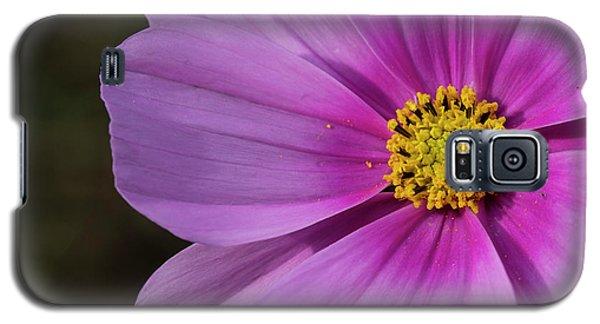 Galaxy S5 Case featuring the photograph Cosmos by Elvira Butler