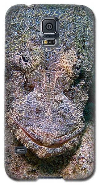 Crocodile Fish Galaxy S5 Case by Joerg Lingnau