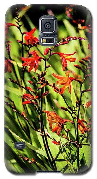 Crocosmia Galaxy S5 Case